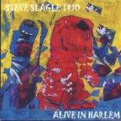 Steve Slagle Trio - Redemption Song