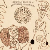 Devendra Banhart - The Body Breaks