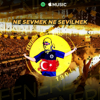Fenerin Çocukları - Ne Sevmek Ne Sevilmek-Fenerbahçe artwork