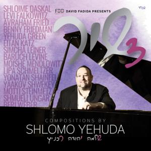 Shlomo Yehuda Rechnitz - Shir 3
