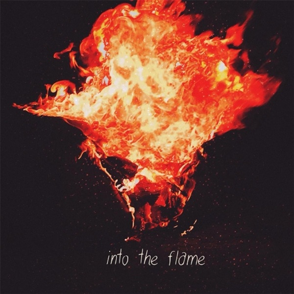 Into the Flame - Single