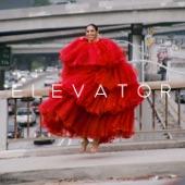 Gavin Turek - Elevator