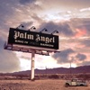Icon Palm Angel (feat. Darkoo) - Single