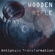 Wooden Rifle - Antiphase Transformation