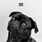 Corona Szn: The Album