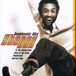 Shaggy - In the Summertime - Line Dance Music