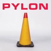 Pylon - The Human Body