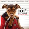 Mychael Danna - A Dog's Way Home (Original Motion Picture Soundtrack) ilustración