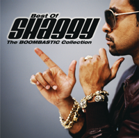 Album It Wasn't Me (feat. Ricardo Ducent) - Shaggy
