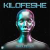 Zinoleesky - Kilofeshe artwork