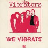 We Vibrate - Single