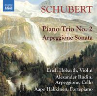 Erich Höbarth, Alexander Rudin & Aapo Hakkinen - Schubert: Chamber Works artwork