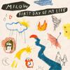 Milow - First Day Of My Life kunstwerk