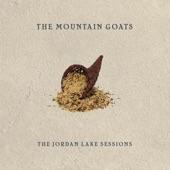 The Mountain Goats - The Plague