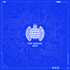 Various Artists - The Annual 2021 - Ministry of Sound artwork