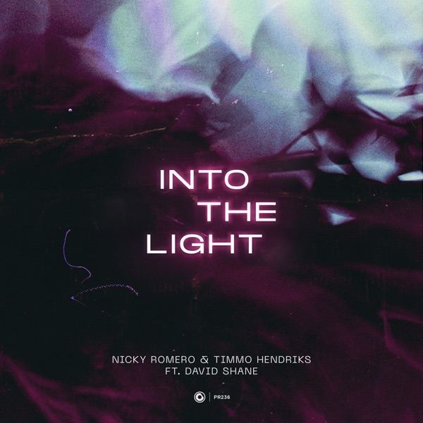 Into the Light (feat. David Shane) - Single