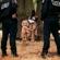 Sélection naturelle - Kalash Criminel