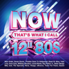 Various Artists - NOW That's What I Call 12