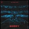 Alan Walker & ISÁK - Sorry (Albert Vishi Remix) обложка