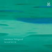 Laurence Hobgood - Blackbird (feat. Jared Schonig & Matthew Closehy)