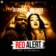 Red Alert (feat. Brick & Lace) - Dj Bobbi & Nyanda