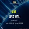 Are Jins Wali Single