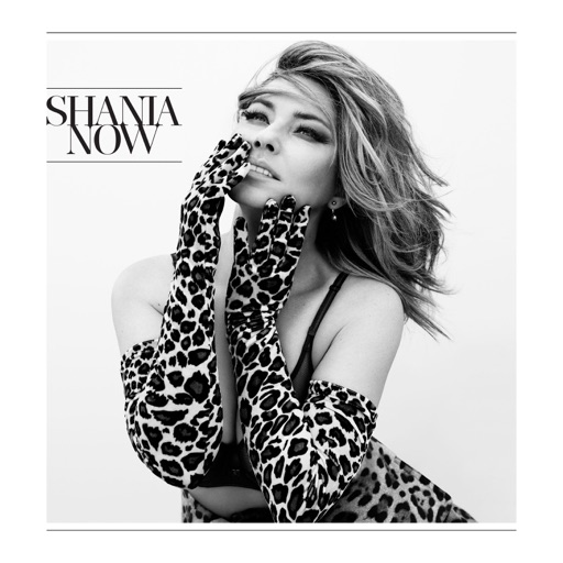 Art for Swingin' With My Eyes Closed by Shania Twain