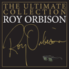 Roy Orbison - Oh, Pretty Woman artwork