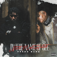 descargar bajar mp3 In The Name Of Gee (Still Most Hated) - Fredo Bang