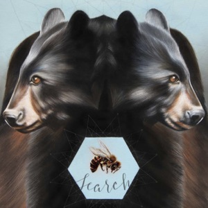 Two Bears - Single Mp3 Download
