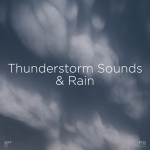 "Thunderstorm Sound Bank & Thunderstorm Sleep - !!"" Thunderstorm Sounds & Rain ""!!"