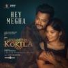 Hey Megha From Vasantha Kokila Single