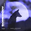 Somebody (feat. Bright Sparks) - Single