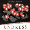 The Felice Brothers - Undress  artwork
