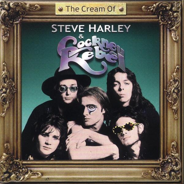 Steve Harley & Cockney Rebel - Come Up & See Me (Make Me Smile)
