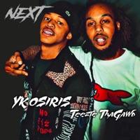 Next (feat. YK Osiris) - Single Mp3 Download