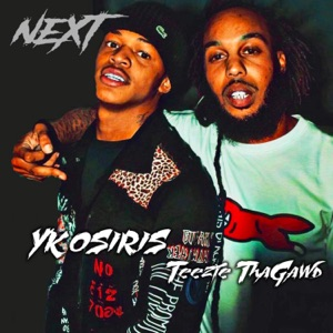 Next (feat. YK Osiris) - Single Mp3 Download