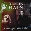 Dekha Hain Single
