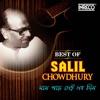 Mone Pade Sei Sab Din - Best of Salil Chowdhury