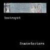 Snakedoctors - Destroyed artwork