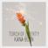 Torch of Liberty - Kana-Boon