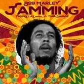 Bob Marley & The Wailers - Jamming