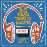 Big Head Todd & The Monsters - Brandy (You're a Fine Girl)