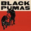 Black Pumas - Black Pumas (Deluxe)  artwork