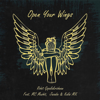 Rohit Gopalakrishnan - Open Your Wings (feat. MC Mushti, Jazadin & Kalai Mk) artwork