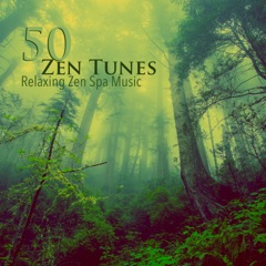 50 Zen Tunes - Relaxing Zen Spa Music & Relaxing Sounds of Nature to Be Mindful and Stress Free with Meditation Relaxation Techniques