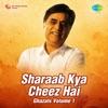 Sharaab Kya Cheez Hai, Vol. 1