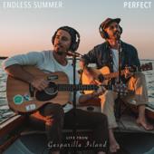 Perfect (Live from Gasparilla Island)