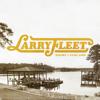 Larry Fleet - Where I Find God artwork