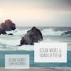 Ocean Waves & Sounds of the Sea - Ocean Sounds & Calm Sea Sounds